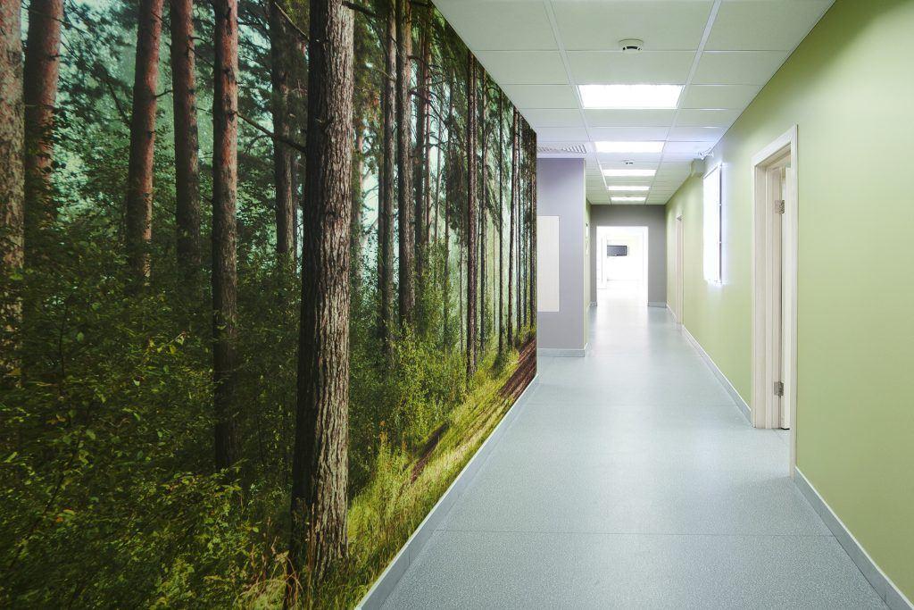 digital forest healthcare wallcovering
